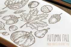 Autumn hand drawn set by Engravector  shop on @creativemarket