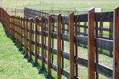 One of the fence lines @ the Bltmore House.