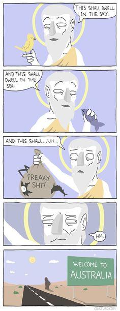 It actually explains a lot…