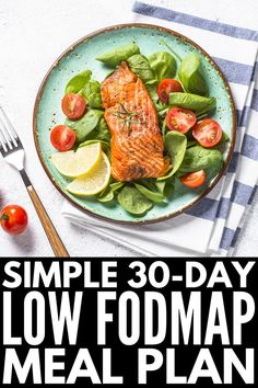 Oct 2019 - With 120 recipes to choose from, this easy Low FODMAP meal plan for beginners will help you get started and stay motivated with the Low FODMAP Diet! Ketogenic Diet Meal Plan, Ketogenic Diet For Beginners, Diet Meal Plans, Ketogenic Recipes, Diet Recipes, Healthy Recipes, Dessert Recipes, Beginners Diet, Keto Meal Plan