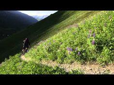 Trail Hunter - Alaska - YouTube