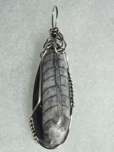 .925 SS Wire Wrapped Orthoceras Pendant