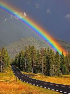 Rainbow after Storm, Yellowstone National Park ) Rainbow Magic, Rainbow Sky, Love Rainbow, Over The Rainbow, Beautiful Sky, Beautiful Landscapes, Beautiful World, Beautiful Places, Nature Pictures