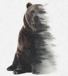 image (I like this design because the picture is half bear and half the landscape bears live on. Forest Tattoos, Nature Tattoos, Body Art Tattoos, Word Tattoos, Ship Tattoos, Ankle Tattoos, Arrow Tattoos, Simbolos Tattoo, Tattoo Small