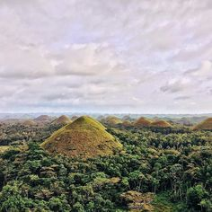 The famous Chocolate Hills of Bohol. Thank you for hosting us @twintidespanglao and help us prepare for our Bohol trip!  Chocolate Hills is unique to the Philippines and truly a beautiful scene. UNESCO heritage (and has been sometimes termed as 8th wonder of the world). Chocolate Hills are considered a natural phenomena really 1268 small hills stretching through a 50 km area and can look endless from the 360 degree viewing point in Carmen Town Bohol. They are covered in green grass during…