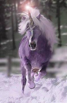 Purple unicorn and snow.in my dreams. Fantasy Unicorn, Unicorn And Fairies, Real Unicorn, The Last Unicorn, Unicorns And Mermaids, Purple Unicorn, Unicorn Art, Magical Unicorn, Magic Creatures