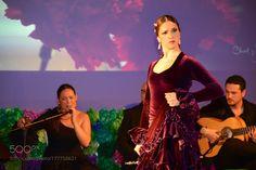 Clavel y Flamenco by manuelmillares1