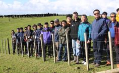 Forty South Korean beef farmers visited a rain-swept Kaipara farm this week. Korean Beef, Farmers, Lamb, Around The Worlds, Marketing, Baby Sheep