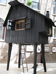 tiny home on stilts