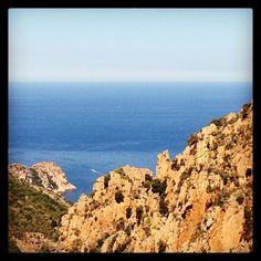 A la recherche du #rosé de l'été : 1ère escale en #Corse