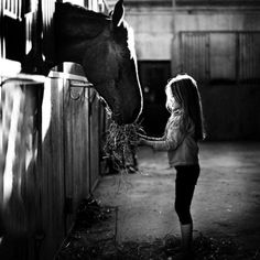 """A barn is a sanctuary in a unsettled world, a sheltered place where life's true priorities are clear. When you take a step back, it's not just about horses — its about love, life, and learning."""