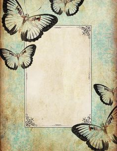 Lilac & Lavender: On Wings of Whimsy