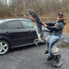 raptor riding