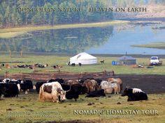 Nomadic Homestay Tour - http://www.ttrmongolia.com/en/tourmore/95 Tours * Extreme auto tours * Rentals * Tickets