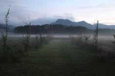 Landschaftsgarten Landscapes, Mountains, Nature, Travel, Landscape, Lawn And Garden, Paisajes, Scenery, Viajes