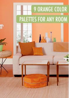 Amiable Orange Painted Living And Kitchen Rooms