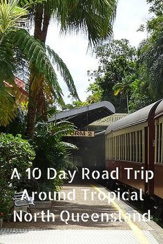 A 10 Day Road Trip Around Tropical North Queensland