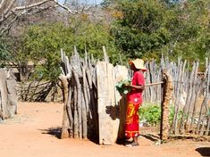 Take part in this village tour in Victoria Falls, Zimbabwe. Spend some time with a local village - learn the culture, enjoy a meal and get involved. This is a great feel-good tour for the whole family. Village Tours, Victoria Falls, Cultural Experience, African Culture, Autumn Activities, Activity Days, Traditional House, Day Trips, Vegetable Garden