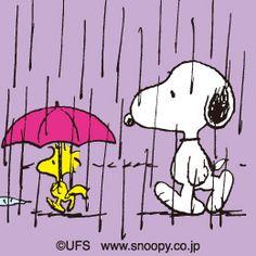 Snoopy & Woodstock walk in the rain