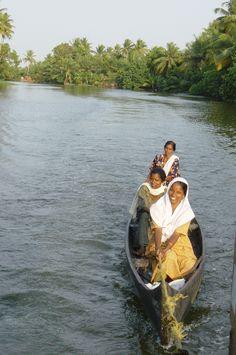 Kerala backwaters .... #GreatBackwaters