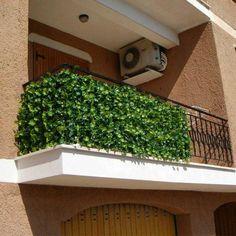 66 im genes estupendas de jardin p rgolas y plantas para - Plantas de balcon resistentes al sol ...