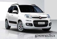 Gamma Metano | Fiat