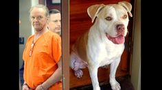"""10 YEARS FOR DRAGGING DOG. this is what the B*d looks like. Hope he rots."""" About the best defense you can put up about what you did on that day was that you were driving drunk,"""" Judge Letitia Verdin said. """"It's just horrible."""""""