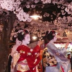 Japanese cherry trees at evening by Hinata Shin on SoundCloud