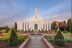 LDS Temple Pictures, Temple Art, Mormon Temples, Temples of the Church of Jesus Christ of Latter-day Saints. Boyd Fine Art and LDS Temples Mormon Temples, Lds Temples, Lds Temple Pictures, Later Day Saints, Temple Gardens, Albuquerque News, Jesus Christ, Savior, Statue Of Liberty