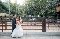 Spanish Zoo Themed Wedding at Rancho Las Lomas with Allen and Nicole - Los Angeles Wedding Photographer