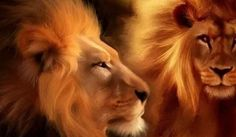 We are about to enter The Lion's Gate, an activation of the number 8/8/8. August, eighth month, in the sign of Leo the lion, on the eighth day of the year, with the numerology year 2015 being 8. There are many aspects to this stargate and I am going...