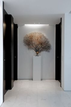 sculpture on plinth entrance hall lobby pasillo en blanco y negro Modern Interior, Interior Architecture, Interior And Exterior, Interior Design, Lobby Design, Hotel Lounge, Style Deco, Cheap Home Decor, New Homes