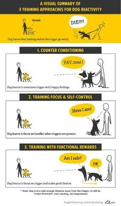 Different dogs learn differently. Maybe one method doesn't work for you, why not try another?
