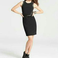 Ann Taylor Dress. Offers Welcome