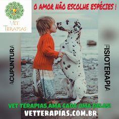 Dra.Flávia Oliva www.vetterapias.com.br Vem pra Vet Terapias a Dra. tem muito amor para dar!!