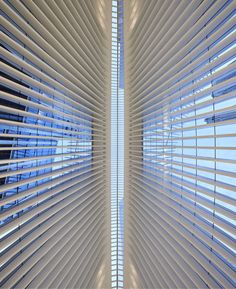 Calatrava's WTC Transportation Hub Photographed by Hufton+Crow - 48