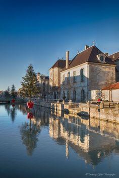 A Troyes, les sapins ont été installés sur les quais de Seine pour les fêtes de fin d'année.