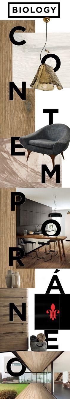 Las vetas orgánicas de la madera que se encuentran en el porcelánico Biology inspiran calidez en espacios contemporáneos.