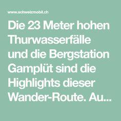 Die 23 Meter hohen Thurwasserfälle und die Bergstation Gamplüt sind die Highlights dieser Wander-Route. Auf der ganzen Strecke gibt es wunderschöne Plätze, um Würste zu braten oder sich an der ruhigen Natur zu erfreuen. Wanderland, Highlights, Roast, Nature, Nice Asses, Luminizer, Hair Highlights, Highlight
