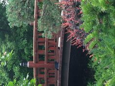 Pic I took at Anderson japanese garden