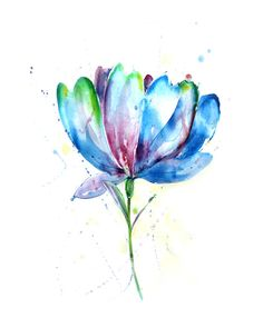 Tulip flower watercolor blue painting nature illustration