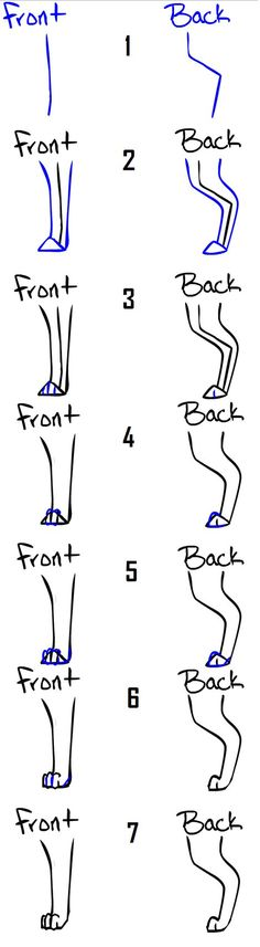 How to draw Dog_Cat legs_feet by =Qexx on deviantART
