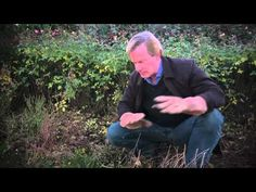 Cleaning Up the Garden: At Home with P. Allen Smith