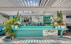 Plants cascading down bar front - Watsons Bay Boutique Hotel, Sydney Surf Cafe, Beach Cafe, Pool Bar, Beach Hotels, Beach Resorts, Cafe Restaurant, Beach Restaurant Design, Khao Lak Beach, Lamai Beach