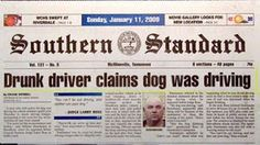 Drunk driver claims dog was driving