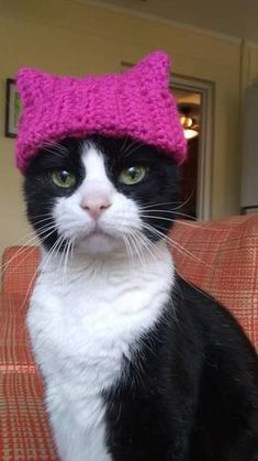 Chaircat Mao for Pussy Power - CROCHET - Chaircat Mao needed a pussy hat for so many reasons, so today she got one. Miraculous, Fleece Hats, Quokka, Cat Hat, Crochet Animals, Diy Crochet, Cute Animals, Kitty, Knitting