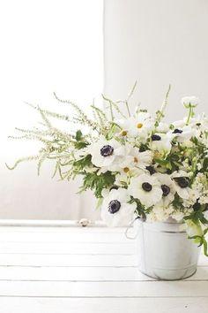 white blooms.