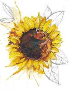 Learn how to paint this ink and watercolour sunflower painting. It's Day 75 of my #365daysofart a summer illustration of a flower. Join me for 365 Days of Art, where I have a go at a whole year's worth of art ideas. Filling my sketchbook to the brim with inspiration, crafts, doodles and drawings. Challenged yourself with me, or just get some great art ideas for a one-off project