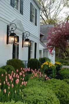 I adore tulips and white houses.
