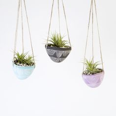 Who says hanging planters have to be boring?